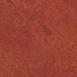 Marmoleum Real henna | Linoleum flooring | Forbo Flooring