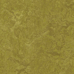 Marmoleum Real olive green | Carpet tiles | Forbo Flooring
