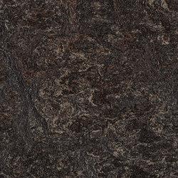 Marmoleum Real dark bistre | Linoleum flooring | Forbo Flooring