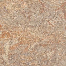 Marmoleum Vivace donkey island | Rouleaux de linoleum | Forbo Flooring