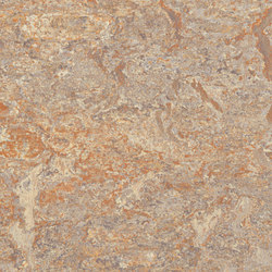 Marmoleum Vivace donkey island | Moquette | Forbo Flooring