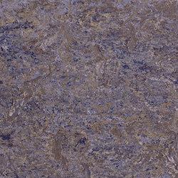 Marmoleum Vivace lavender field | Rouleaux de linoleum | Forbo Flooring
