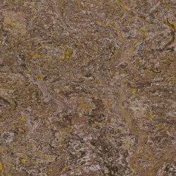 Marmoleum Vivace autumn leaf | Linoleum rolls | Forbo Flooring