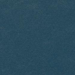 Marmoleum Walton | Cirrus petrol | Rouleaux de linoleum | Forbo Flooring