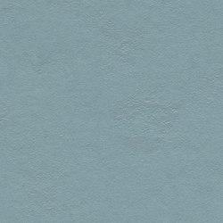 Marmoleum Walton | Cirrus vintage blue | Rollos | Forbo Flooring