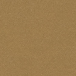 Marmoleum Walton | Cirrus cardboard | Rouleaux de linoleum | Forbo Flooring