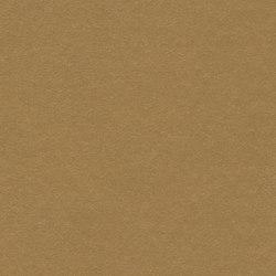 Marmoleum Walton | Cirrus cardboard | Floors | Forbo Flooring