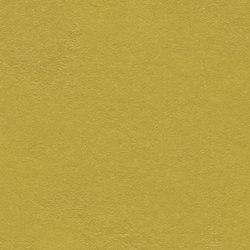 Marmoleum Walton | Cirrus yellow moss | Pavimentazione linoleum | Forbo Flooring
