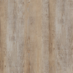 Allura Click bright multicolor pine | Plastic flooring | Forbo Flooring