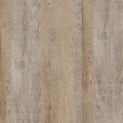 Allura Click bright multicolor pine | Lastre plastica | Forbo Flooring