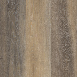 Allura Click multicolor light oak | Synthetic panels | Forbo Flooring