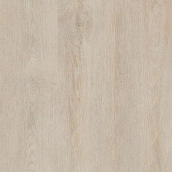 Allura Click off white oak | Synthetic panels | Forbo Flooring
