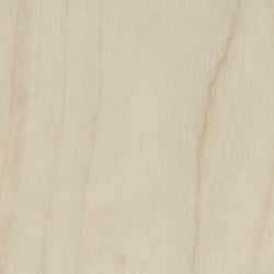 Allura Wood light maple | Synthetic tiles | Forbo Flooring