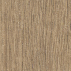 Allura Wood light rustic oak | Plastic flooring | Forbo Flooring