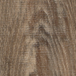 Allura Wood brown raw timber | Piastrelle plastica | Forbo Flooring
