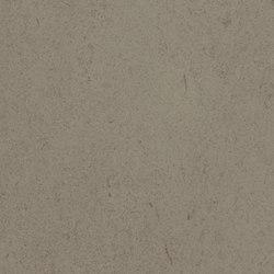 Allura Flex Decibel grigio concrete | Plastic flooring | Forbo Flooring