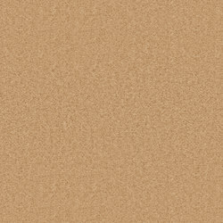 Needlefelt Showtime Nuance beige | Carpet rolls / Wall-to-wall carpets | Forbo Flooring