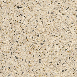 Acid etched Surfaces - beige | Revestimientos de fachada | Hering Architectural Concrete