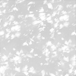 Light and shadow | 24.085.1 | Graphic | Panneaux de bois | ornament.control