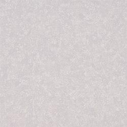 Amrapali Wallpaper | Mayura - Clover | Wandbeläge | Designers Guild