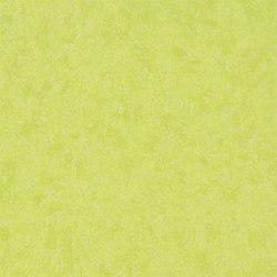 Amrapali Wallpaper | Mayura - Lime | Carta da parati | Designers Guild