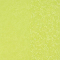 Amrapali Wallpaper | Kalpana - Lime | Wallcoverings | Designers Guild