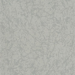 Boratti Wallpaper | Boratti - Silver | Wandbeläge / Tapeten | Designers Guild