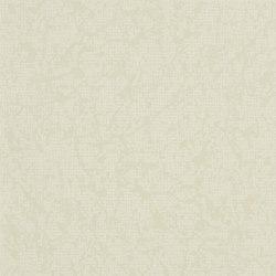 Boratti Wallpaper   Boratti - Oyster   Wallcoverings   Designers Guild