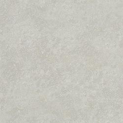 Boratti Wallpaper | Chiazza - Silver | Papeles pintados | Designers Guild
