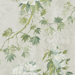 Caprifoglio  Wallpaper | Floreale - Steel | Wall coverings / wallpapers | Designers Guild