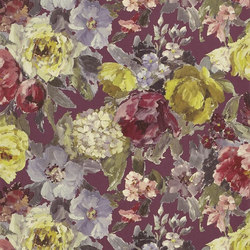 Caprifoglio  Wallpaper | Roseto - Damson | Papeles pintados | Designers Guild