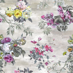Caprifoglio Wallpaper | Caprifoglio - Ecru | Wall coverings / wallpapers | Designers Guild