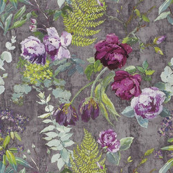 Caprifoglio  Wallpaper | Tulipani - Amethyst | Wall coverings | Designers Guild