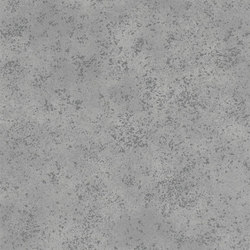 Castellani Wallpaper | Celestine - Graphite | Carta da parati / carta da parati | Designers Guild