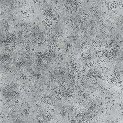 Castellani Wallpaper | Celestine - Charcoal | Wall coverings / wallpapers | Designers Guild