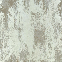 Linnaeus  Wallpaper | Ajanta - Pewter | Wall coverings | Designers Guild