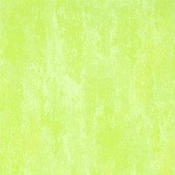 Linnaeus  Wallpaper | Ajanta - Moss | Wandbeläge | Designers Guild