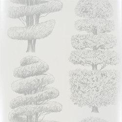 Linnaeus  Wallpaper | Linnaeus - Platinum | Wall coverings | Designers Guild
