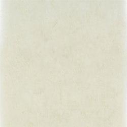 Linnaeus  Wallpaper | Ellora - Champagne | Wandbeläge | Designers Guild