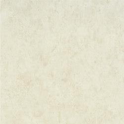Linnaeus  Wallpaper | Ellora - Linen | Wandbeläge | Designers Guild