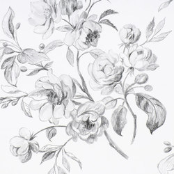 Nabucco Wallpaper | Watelet - Black And White | Carta da parati / carta da parati | Designers Guild