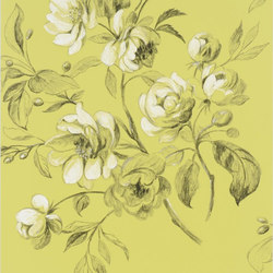 Nabucco Wallpaper | Watelet - Chartreuse | Wallcoverings | Designers Guild
