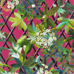 Nouveaux Mondes Wallpaper | Canopy - Grenade | Wall coverings / wallpapers | Designers Guild
