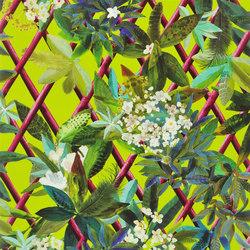 Nouveaux Mondes Wallpaper | Canopy - Lime | Wall coverings | Designers Guild