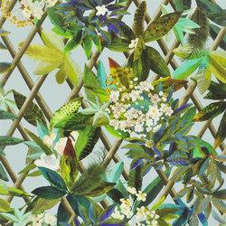 Nouveaux Mondes Wallpaper | Canopy - Celadon | Carta da parati | Designers Guild