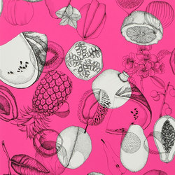 Nouveaux Mondes Wallpaper | Parati - Grenade | Wall coverings | Designers Guild