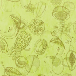 Nouveaux Mondes Wallpaper | Agua Parati - Lime | Wall coverings | Designers Guild
