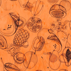 Nouveaux Mondes Wallpaper | Agua Parati - Papaye | Wall coverings / wallpapers | Designers Guild