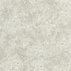 Sukumala Wallpaper | Botticino - Pewter | Carta da parati | Designers Guild