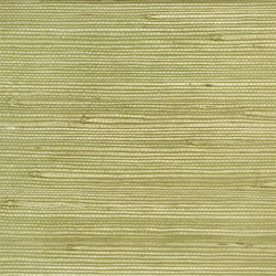 Whitewell Wallpaper | Kelston - Willow (J) | Carta da parati | Designers Guild